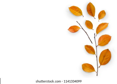 Autumn composition. Fallen yellow leaves and branches. Top view. Minimal concept. Copy space.