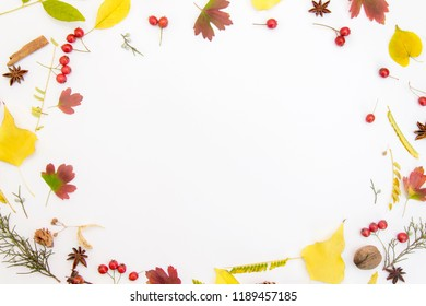 Autumn composition. Frame made of autumnal leaf on white background. Autumn, fall concept. Flat lay, top view, copy space