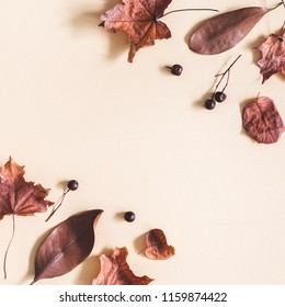 Autumn composition. Frame made of dried leaves on pastel beige background. Autumn, fall concept. Flat lay, top view, copy space, square