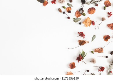 Autumn composition. Frame made of eucalyptus branches, rose flowers, dried leaves on white background. Autumn, fall concept. Flat lay, top view, copy space