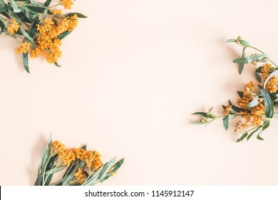 Autumn composition. Frame made of fresh orange flowers on pastel beige background. Autumn, fall concept. Flat lay, top view, copy space