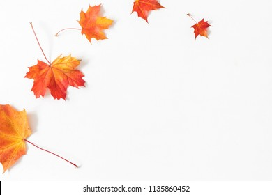 Autumn composition. Frame made of autumn maple leaves on white background. Flat lay, top view, copy space