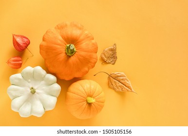 Autumn composition. Fresh three pattypan squash, pumpkin and autumn leaves herbarium on yellow background with copy space. Top view Flat lay Template for your design, invitation, greeting card.