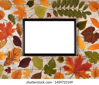 Autumn composition with leaves on a wooden background and photo frame with white empty space