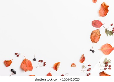 Autumn composition made of autumn dry multi-colored leaves and berries of chokeberry, hawthorn on white background. Autumn, fall concept. Flat lay, top view, copy space