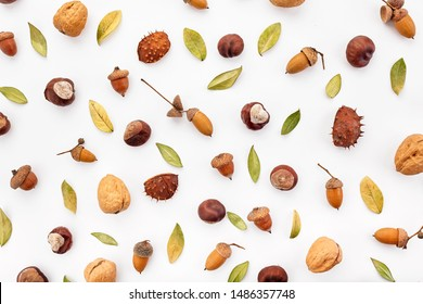 Autumn composition made of nuts, acorns, chestnuts and dry leaves on white background. Flat lay, top view.