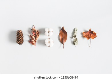 Autumn composition. Pattern made of eucalyptus branches, cotton flowers, dried leaves on pastel gray background. Autumn, fall concept. Flat lay, top view