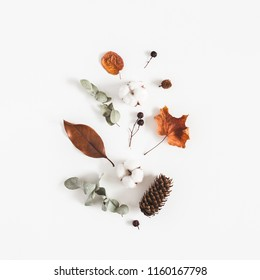 Autumn composition. Pattern made of eucalyptus branches, cotton flowers, dried leaves on white background. Autumn, fall concept. Flat lay, top view