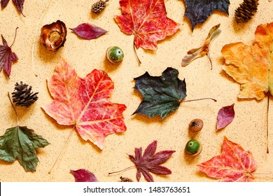 Autumn composition. Pattern made of autumn leaves, pine cones and acorns. Flat lay, top view