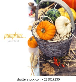 Autumn composition ( pumpkins and corn on old wooden table). Thanksgiving day concept (with easy removable sample text)
