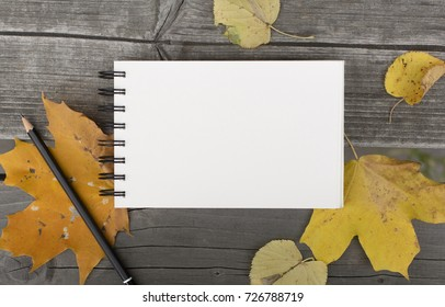 Autumn composition walk in the park with blank notebook and fallen leaves