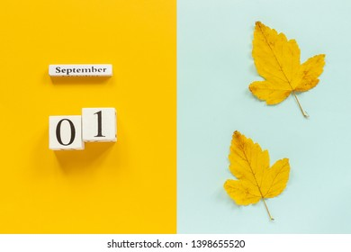 Autumn composition. Wooden calendar September 1 and yellow autumn leaves on yellow blue background. Top view Flat lay Mockup Concept Hello September.
