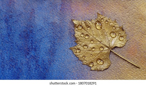 Autumn concept. Autumn colors. Golden leaf in drops of water on a blue watercolor background. copy space