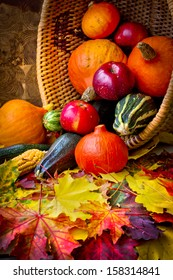 Autumn concept with seasonal fruits and vegetables/organic food background; Autumn harvest with Farmers Vegetable fruits on dark wooden background/Thanksgiving day concept