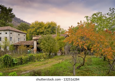 Autumn in countryside