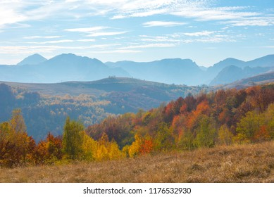 Autumn countryside panorama in mountains. Forest with colorful foliage. Transylvania, Romania