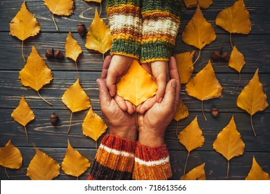 Autumn couple holding yellow ash leaf,embrace hands top view.Autumnal relationship family love concept