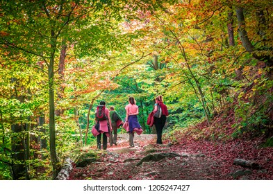Autumn in Cozia, Carpathian Mountains, Romania. Young women walking in the forest and admiring the fall colors.