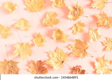 Autumn creative composition. Dried leaves on pastel pink  background. Fall concept. Autumn background. Flat lay, top view, copy space