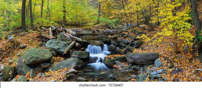 Autumn creek closeup panorama with yellow maple trees and foliage on rocks in forest with tree branches.