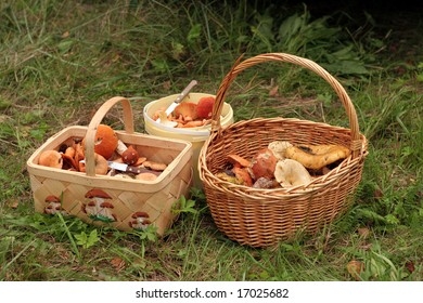 Autumn crop - some baskets with mushrooms