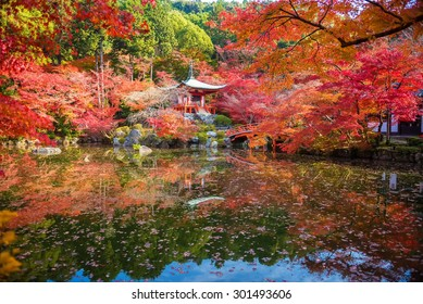 Autumn at daigoji temple with colorful of maple trees and leaves in a pond around , most beautiful famous place in autumn season at Kyoto ,Japan