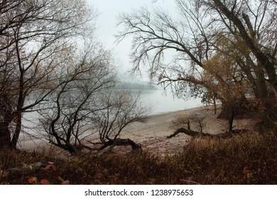 Autumn in danube bend