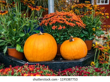 Autumn decor with 2 beautiful pumpkins and fall mum blossoms.