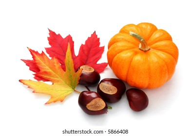 Autumn decoration from pumpkin, colorful leaves and chestnuts.