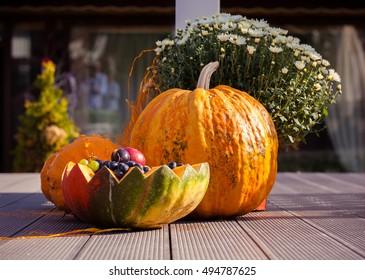 Autumn decoration. Pumpkin on the wooden floor.