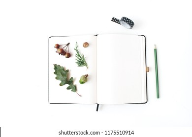 Autumn desktop stationery mock-up scene. Blank notebook with pencil, black washi tape, oak leaf, acorn and little apples on white table background. Flat lay, top view. Botanical herbarium design.