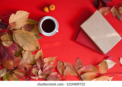 autumn disease medicine red berries yellow leaves tea