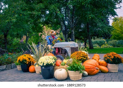 Autumn display with tractor and scarecrow