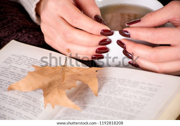 autumn-dry-leaf-on-book-600w-1192818208.