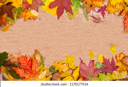 Autumn dry leaves on wooden texture copy space, add text, top view