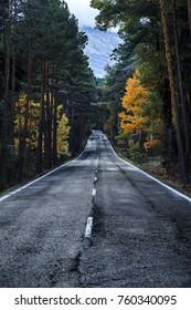 Autumn endless road