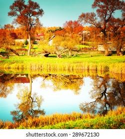 Autumn. Fall. beautiful autumn background