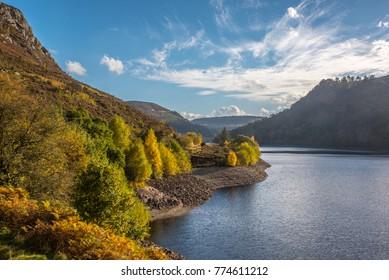 Autumn and the fall at Caban Coch, Elan Valley, Rhyadar, Powys, Wales UK