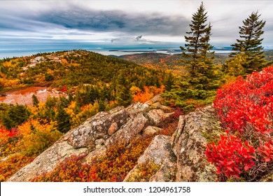 Autumn Fall Colors in Acadia National Park Island in Maine high on mountain ledge trail overlooking atlantic ocean with fog and lake in background