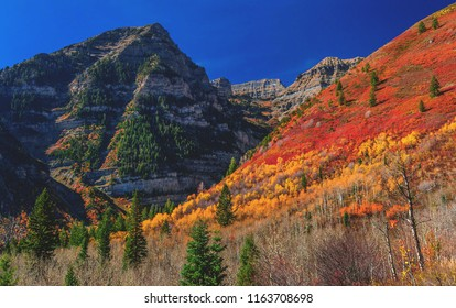 Autumn / Fall colors contrast with a blue sky just above the Sundance ski resort in the Wasatch mountains of Utah, USA.