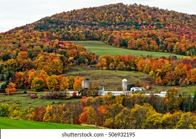 Autumn and Fall Foliage at New York State Country