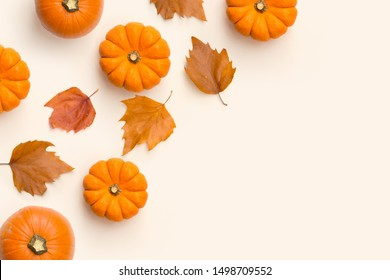 Autumn fall and harvest contemporary background composition with pumpkins and leaves.