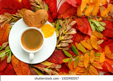Autumn, fall leaves, hot steaming cup of coffee and a warm on table background. Seasonal, morning coffee, Sunday relaxing and still life. Bright cafe menu concept