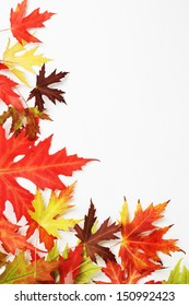 Autumn fallen colored leaves on white background