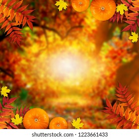Autumn festive background with pumpkins and autumnal leaves for Thanksgiving day and empty place for your text