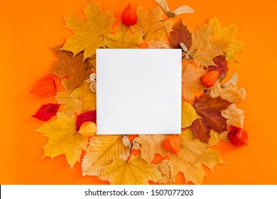 Autumn flat lay composition with postcard mockup and dry leaves on bold orange color background. Creative autumn, thanksgiving, fall, halloween concept. Top view, copy space