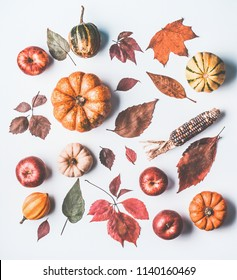 Autumn flat lay with various pumpkins and dried leaves on white background, top view