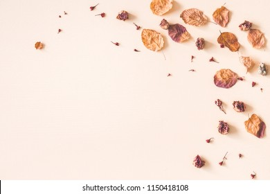 Autumn floral composition. Frame made of dried flowers and leaves on pastel beige background. Autumn, fall concept. Flat lay, top view, copy space