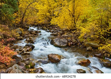 Autumn foliage along Big Cottonwood Creek, near Salt Lake City, Utah