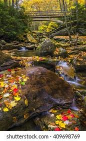 Autumn foliage along Boone Fork on the Blue Ridge Parkway in North Carolina